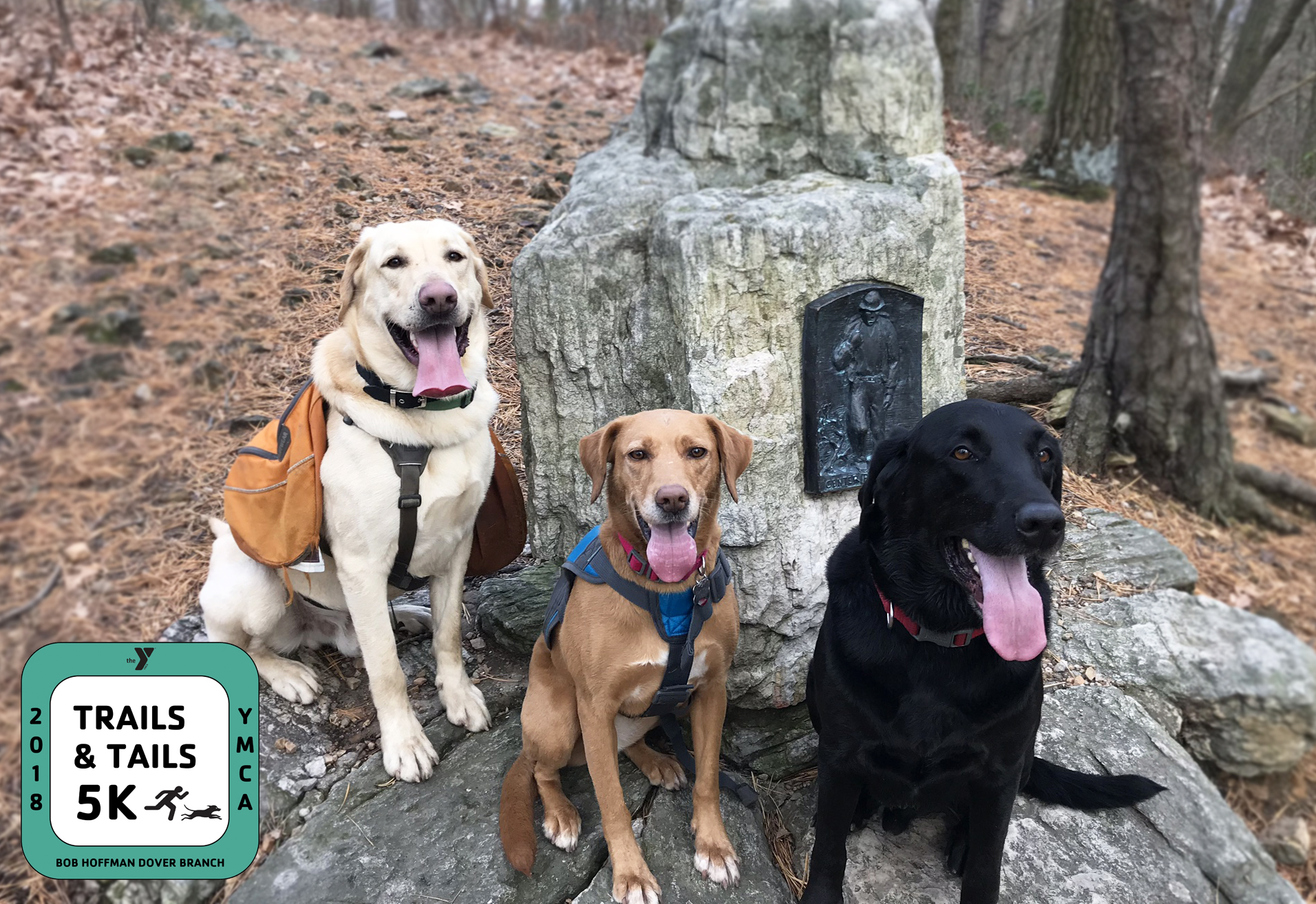 Trails and Tails 5K: Furry Friends for Family Wellness