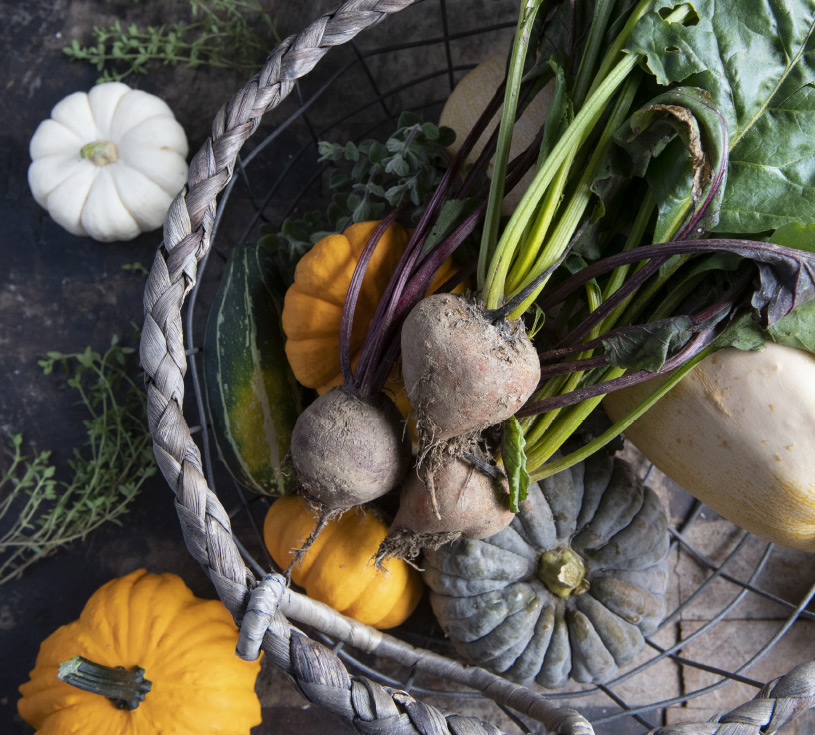 Taste a Legacy of Food and Farming